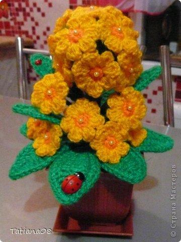 Мастер-класс по вязанию вот такого чудного цветка