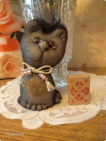 Черная кошка фото 1