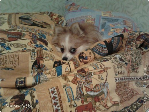 Вот так мы спим! вся кровать занята! фото 4