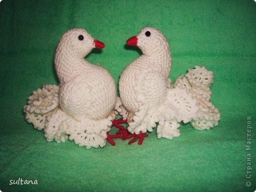 крючком Любовь и голуби