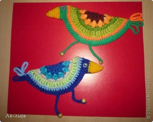 Гуляя по просторам интернета, наткнулась на совершенно чумовых, безумно позитивных птичек в обожаемом мною наивном стиле, которых мастерица назвала журавликами. Ручки, конечно же, сразу зачесались и у меня буквально за день родилась стая. Вот ссылка на МК автора http://ru-knitting.livejournal.com/4526926.html. Спасибо ей огромное. Но мне были нужны большие птицы из толстых ниток, поэтому я кое-что убрала, кое-что прибавила. То, что получилось, на журавликов никак не походило. фото 24