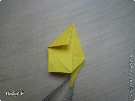 Привет друзьям!  Кусудама, про которую я решилась вам напомнить, была придумана год назад. И в силу определенных обстоятельств туториал на нее был размещен в All-origami. И, к большому сожалению, про кусудаму забыли. А она, честное слово, очень красивая. Ее можно сравнить с Монблосс и Азалией Татьяны Высочиной. Такая же цветочная и воздушная.  Поэтому, зная, что вы сейчас готовите весенние подарки, я решила выложить в СМ повторный МК. Буду рада, если он вам пригодится.  Name: Wild Rose Designer: Uniya Filonova Parts: 30 + 60 Paper: 6,5*6,5 + 8,5*8,5 Final height: 12 сm Assembled without glue.  модель принимала участие во флешмобе http://stranamasterov.ru/node/547199?tid=2168%2C850 фото 19