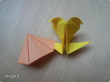 Привет друзьям!  Кусудама, про которую я решилась вам напомнить, была придумана год назад. И в силу определенных обстоятельств туториал на нее был размещен в All-origami. И, к большому сожалению, про кусудаму забыли. А она, честное слово, очень красивая. Ее можно сравнить с Монблосс и Азалией Татьяны Высочиной. Такая же цветочная и воздушная.  Поэтому, зная, что вы сейчас готовите весенние подарки, я решила выложить в СМ повторный МК. Буду рада, если он вам пригодится.  Name: Wild Rose Designer: Uniya Filonova Parts: 30 + 60 Paper: 6,5*6,5 + 8,5*8,5 Final height: 12 сm Assembled without glue.  модель принимала участие во флешмобе http://stranamasterov.ru/node/547199?tid=2168%2C850 фото 36