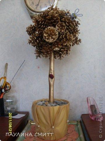 Дерево из шишек фото 2