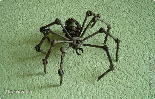 """В этом году хозяином Битцевского леса объявлен паук-крестовик, и в парке стартуют традиционные дни """"Хозяина леса"""". Значит сплетём паука..."""