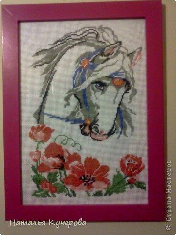 Лошадь в маках Канва Нитки