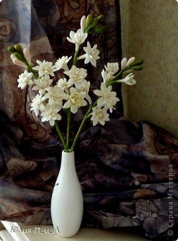 """Давно что-то не делала я цветов, и когда обратилась к своим запасникам обнаружила фото цветка, никак не похожего на розу,  под названием  - тубероза. Благодаря инету знаю, что лепестки туберозы имеют довольно плотную структуру и внешне смотрятся как восковые. На родине (Мексика)  ее называют каменным цветком, в Китае - душистый нефрит. Запах туберозы слегка напоминает лилейный или гиацинтовый, поэтому этот цветок нередко называют «ночным гиацинтом», используют в парфюмерии. В реальной жизни я цветка не видела, делала по фото, т.ч. могут быть и ошибки. Но если кому интересно, делаем со мной, это совсем не трудно. Обычно тубероза имеет белые цветки, но уже выведены махровые формы с кремовыми, розовыми, сиреневыми, пурпурными цветками. У меня цветы как бы кремовые, т.к. клей изначально был желтоват. Цветы сделаны из самоварной массы """"холодный фарфор"""". фото 10"""