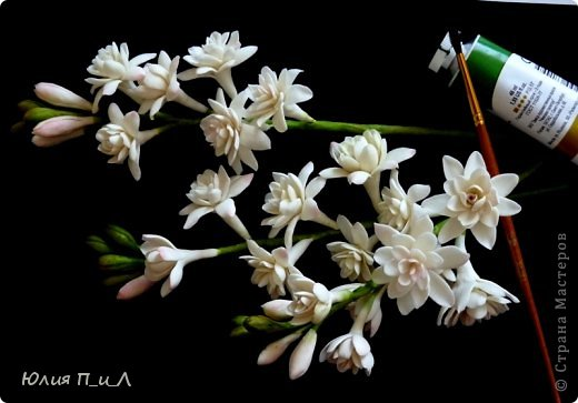 """Давно что-то не делала я цветов, и когда обратилась к своим запасникам обнаружила фото цветка, никак не похожего на розу,  под названием  - тубероза. Благодаря инету знаю, что лепестки туберозы имеют довольно плотную структуру и внешне смотрятся как восковые. На родине (Мексика)  ее называют каменным цветком, в Китае - душистый нефрит. Запах туберозы слегка напоминает лилейный или гиацинтовый, поэтому этот цветок нередко называют «ночным гиацинтом», используют в парфюмерии. В реальной жизни я цветка не видела, делала по фото, т.ч. могут быть и ошибки. Но если кому интересно, делаем со мной, это совсем не трудно. Обычно тубероза имеет белые цветки, но уже выведены махровые формы с кремовыми, розовыми, сиреневыми, пурпурными цветками. У меня цветы как бы кремовые, т.к. клей изначально был желтоват. Цветы сделаны из самоварной массы """"холодный фарфор"""". фото 1"""