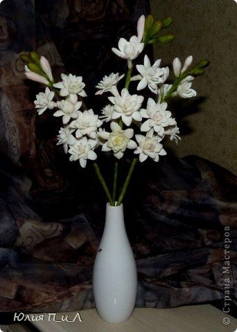 """Давно что-то не делала я цветов, и когда обратилась к своим запасникам обнаружила фото цветка, никак не похожего на розу,  под названием  - тубероза. Благодаря инету знаю, что лепестки туберозы имеют довольно плотную структуру и внешне смотрятся как восковые. На родине (Мексика)  ее называют каменным цветком, в Китае - душистый нефрит. Запах туберозы слегка напоминает лилейный или гиацинтовый, поэтому этот цветок нередко называют «ночным гиацинтом», используют в парфюмерии. В реальной жизни я цветка не видела, делала по фото, т.ч. могут быть и ошибки. Но если кому интересно, делаем со мной, это совсем не трудно. Обычно тубероза имеет белые цветки, но уже выведены махровые формы с кремовыми, розовыми, сиреневыми, пурпурными цветками. У меня цветы как бы кремовые, т.к. клей изначально был желтоват. Цветы сделаны из самоварной массы """"холодный фарфор"""". фото 11"""
