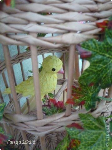 Добрый день! Скоро весна. Захотелось сделать что-то жизнеутверждающее. Птичек в клетку не будем садить. Пусть их заменят бумажные в бумажных клетках. фото 3