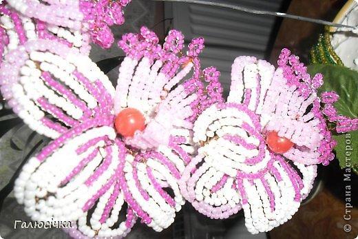 ДЛя того щоб зробити таку орхідею потрібно 3 кольори бісеру на квіти 2 на листки та великі буси та дріт кусок грубого на стебло , та тонкого на самі квіти фото 11