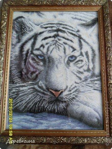 крестом Вышивка Белый Тигр