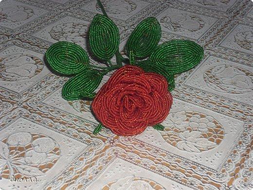 Поделка изделие Бисероплетение цветы и деревья Бисер фото 8.