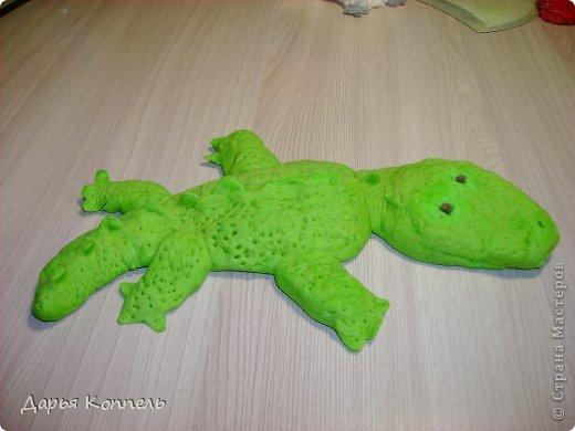 Это мой Крокодил! Не волнуйтесь не кусается. Ведёт себя хорошо.  фото 1