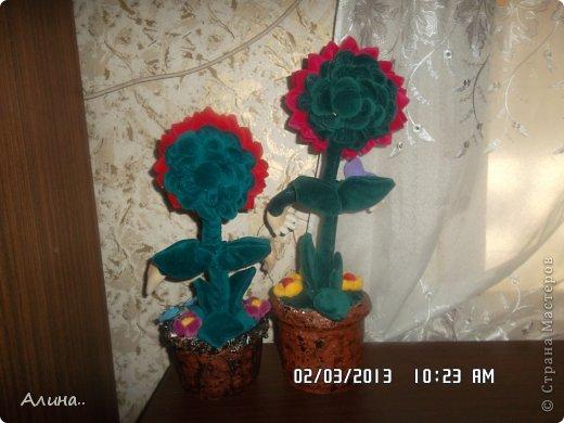 Мои куклы... фото 3