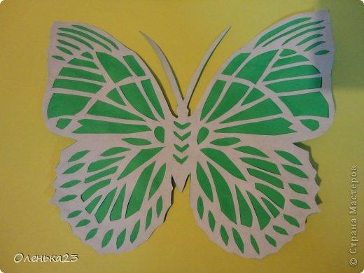 Поделка изделие Аппликация Вырезание мои бабочки повторюшки Бумага Клей фото 5