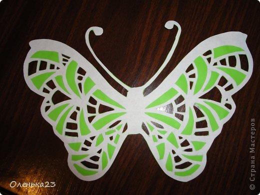 Поделка изделие Аппликация Вырезание мои бабочки повторюшки Бумага Клей фото 6