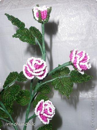 Поделка изделие 8 марта День рождения Бисероплетение Кустовая роза Бисер Гипс Проволока фото 2.
