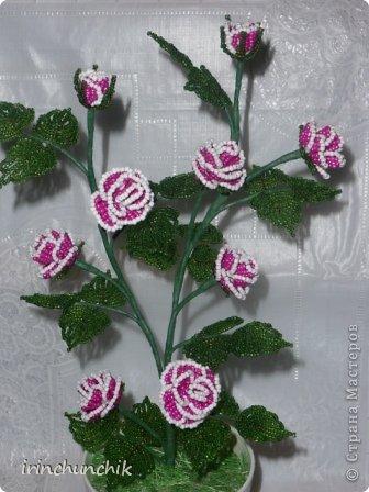 Поделка изделие 8 марта День рождения Бисероплетение Кустовая роза Бисер Гипс Проволока.