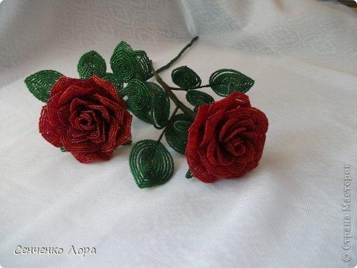 Поделка изделие 8 марта Бисероплетение Красные розы Бисер фото 2.
