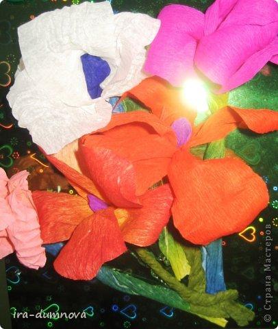 Цветочки Анжелики П. фото 2