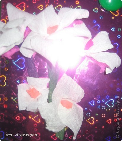 Цветочки Анжелики П. фото 4