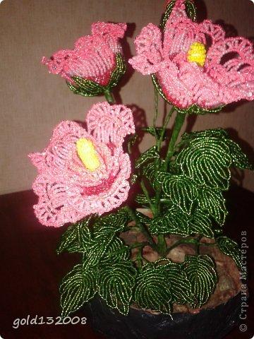 Бисероплетение - Гибискус Розовый сон из бисера.