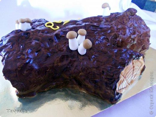 Люблю я неординарные тортики!!! Бревном своим я горжусь))) просто очень нравится как получилось) фото 2