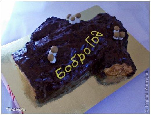 Люблю я неординарные тортики!!! Бревном своим я горжусь))) просто очень нравится как получилось) фото 1