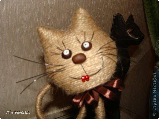 кошачье царство фото 5
