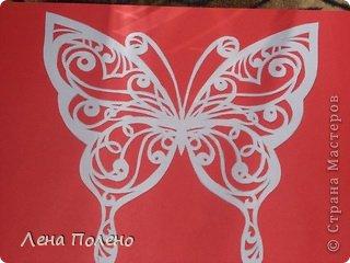 Вырезание бабочки-повторяшки Бумага фото 3