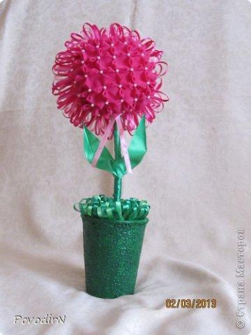 Благодаря мастер-классу Ликмы, у меня на подоконнике выросли цветочки. фото 3
