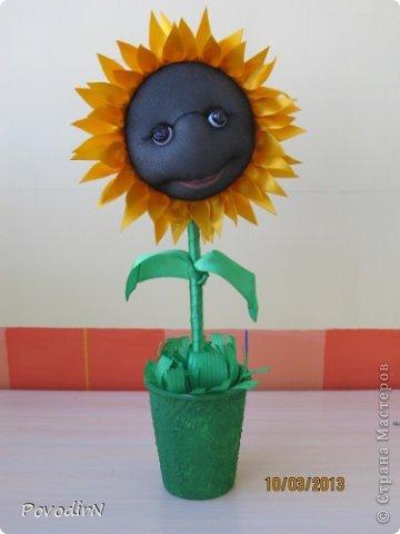 Благодаря мастер-классу Ликмы, у меня на подоконнике выросли цветочки. фото 4