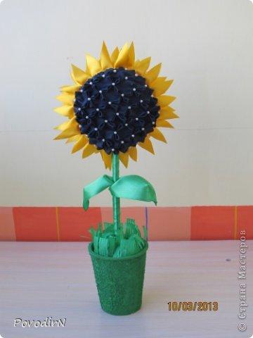 Благодаря мастер-классу Ликмы, у меня на подоконнике выросли цветочки. фото 5