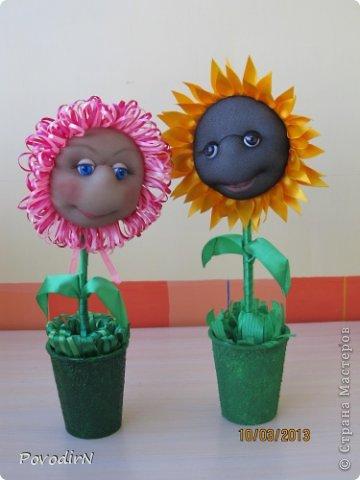 Благодаря мастер-классу Ликмы, у меня на подоконнике выросли цветочки. фото 6