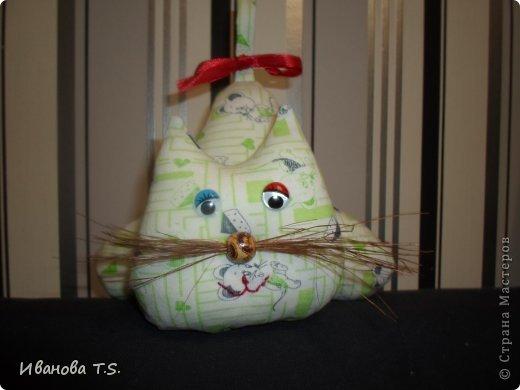 Котейки. фото 2