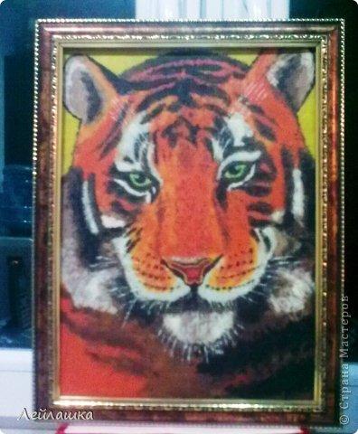 Мой черно-белый тигр не давал покоя моей хорошей знакомой - пришлось выполнить ее просьбу и слепить еще одного тигра))) Для разнообразия сделала цветного... фото 2