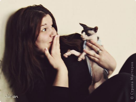 """Знакомьтесь, это мой кот- Оскар, ласков Оскарбинка, поселился он у нас с пол года назад. Оскар- канадский сфинкс, как же я давно мечтала о """"лысой"""" кошке, и вот сбылась мечта идиотки)))  фото 7"""