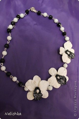 мои орхидеи фото 9
