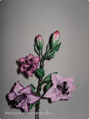 Вот такая лилия из бисера у меня получилась.....