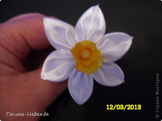 """Добрый вечер! Спешу похвастаться своим первым нарциссом. Спасибо за МК Ирине ( Ириска81). Правда серединку цветка сделала по своему т.к. на момент изготовления цветка у меня не оказалось ленты 4см., поэтому я решила использовать ленту 2,5см Из квадрата вырезала  3 лепестка, обожгла их ,одновременно делала по краю """"волнушки"""". Потом наклеила их на ватную палочку и потом белые лепестки которые предварительно уже были собраны на нитку надела на ватную палочку и жёлтая серединка очень чётко и хорошо прошла в дырочку серединки белых лепестков. Надеюсь понятно написала.Возможно уже кто-то так делал, но я описала как я сделала.. фото 1"""