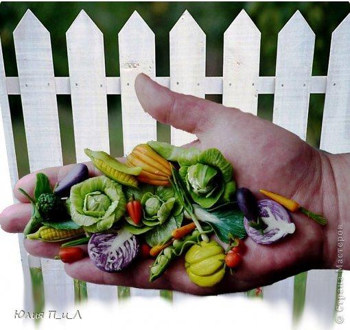 Как говорится: «Готовь сани летом», вот и я покажу вам урожай, сделанный еще прошлой осенью, но может кому-то пригодится и весной. Все овощи из самоварной  массы «холодный фарфор», но вполне могут быть сделаны и из пластики, а может и из соленого теста.