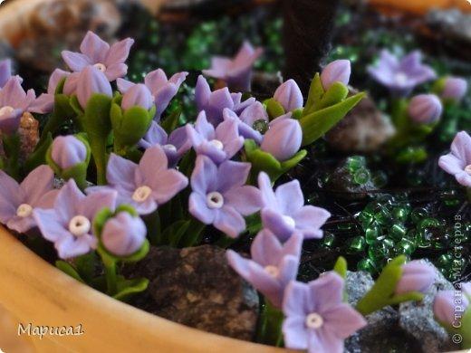 Цветочки из холодного фарфора. фото 1