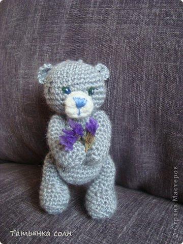 Мишка Теди и кошечка земляничка фото 3