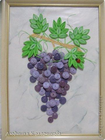 43 Как сделать для винограда подпорки