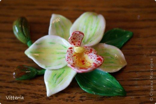 Магнит из полимерной глины, покрыт акриловым лаком - бело-зеленая орхидея. Размер 5*5 см. фото 1