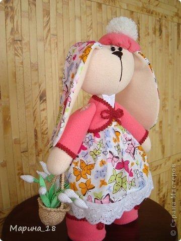 Как хочется весны! Отправилась Зайка в лес на её поиски. И нашла первые подснежники! Значит, весна не за горами. фото 3