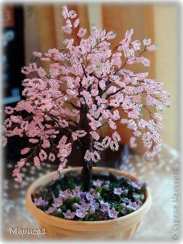 Цветочки из холодного фарфора. фото 2