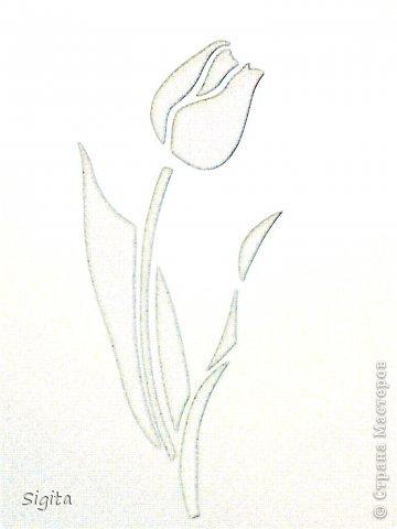 Тюльпан. Копия. фото 3