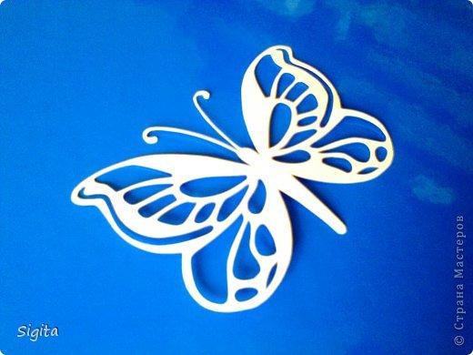 Украшение Вырезание Бабочка Копия Бумага фото 1